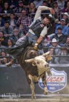pbr bull riding 4891